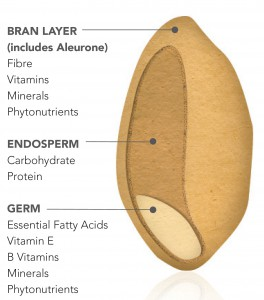 Grain cross section