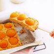 Apricot Dessert Slice