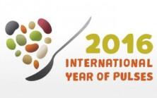 IYP-UN-Logo-2