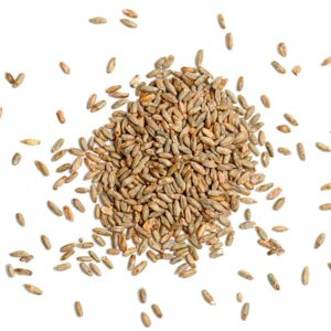 Types of Grains | Grains & Legumes Nutrition Council